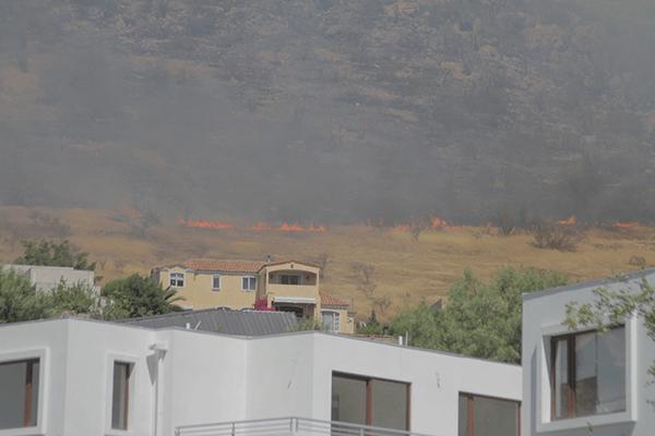 El fuego sigue avanzando por el lugar Foto: Chicureo Hoy